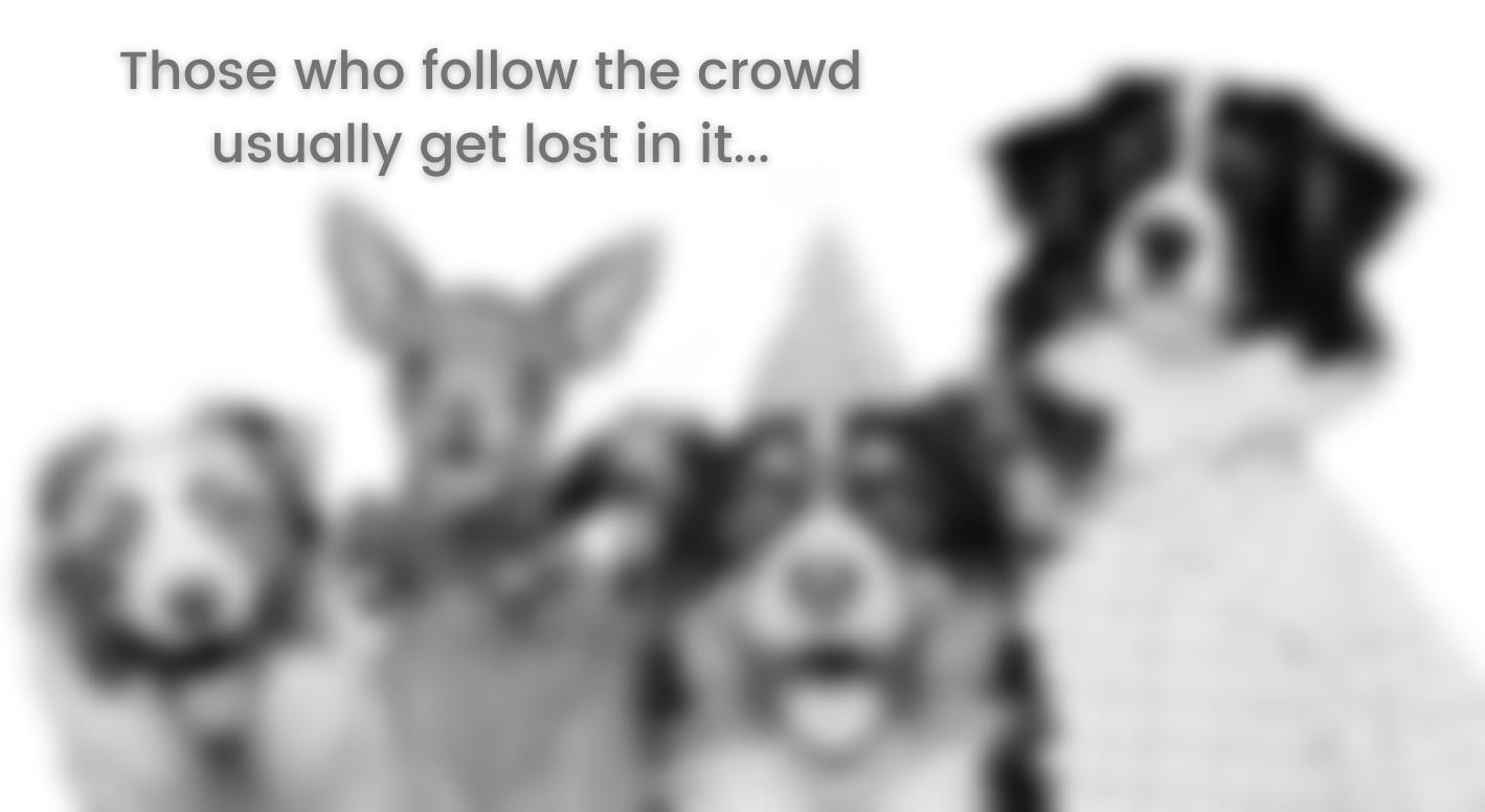 Web Mojo Dogs blur